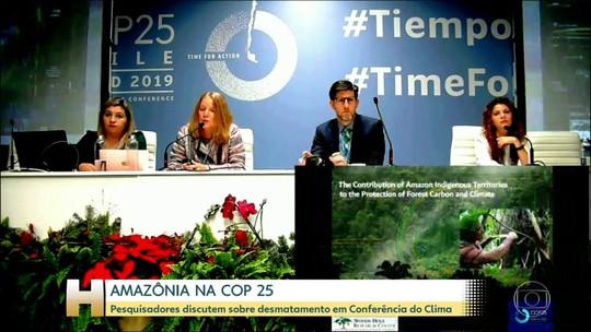 Floresta amazônica é tema de discussão na Conferência do Clima da ONU