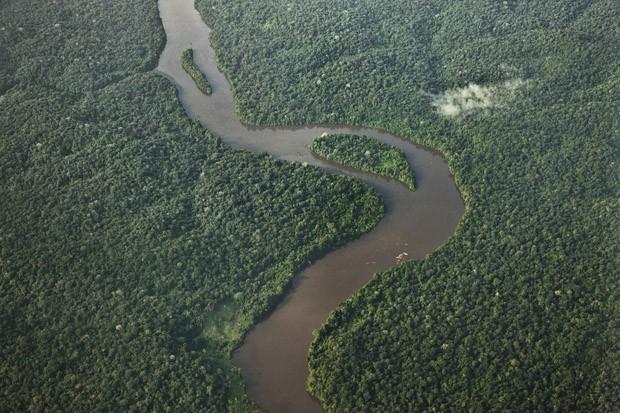 Brasil, Suriname e Guiana Francesa compartilham dados de ecossistemas fronteiriços em plataforma digital