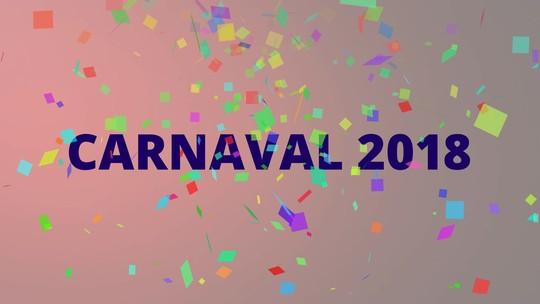 Veja os enredos das escolas de samba do Rio para o carnaval 2018