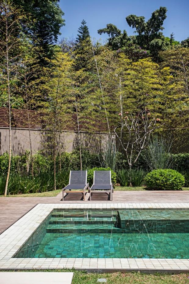 Para disfarçar o encontro dos muros, o paisagista plantou as espécies em camadas. Rente à parede, tumbérgia-arbustiva e bambu-mossô. Ao centro, jasmim-manga com moreia na base, entre dois capins-azuis (Foto: Gui Morelli / Divulgação)