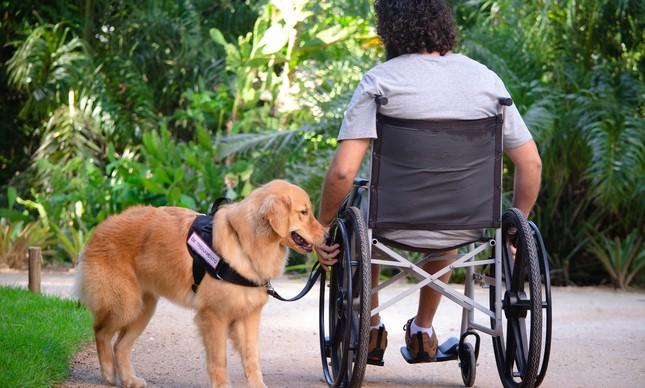 O adestrador Raul Garcia em um treinamento com a cadela Gaia