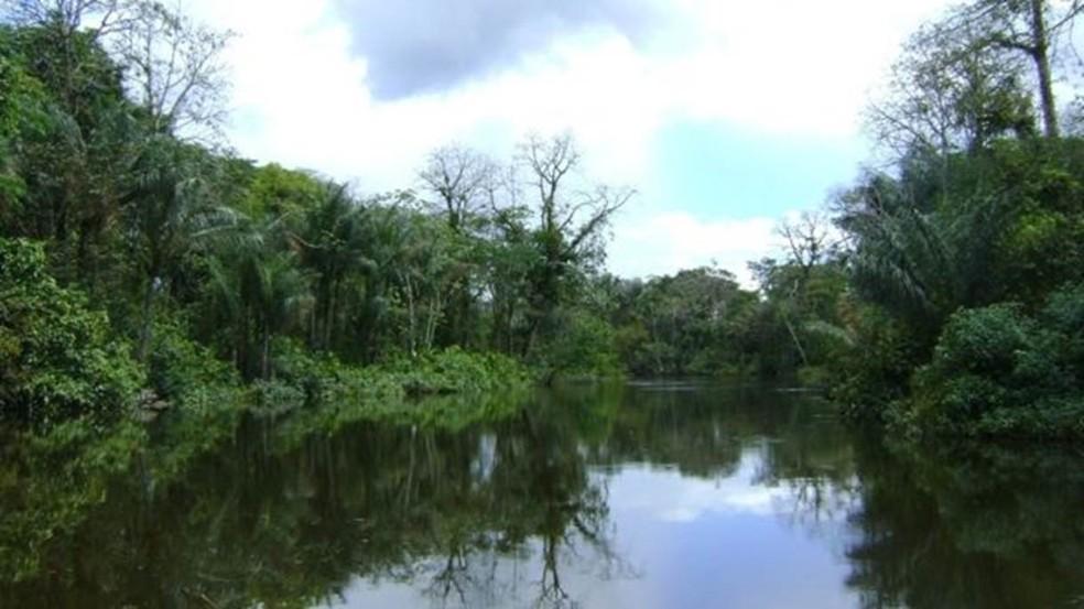 Um dos acessos à Reserva do Rio Iratapuru, no Amapá, parte da Renca (Foto: WWF-Brasil / Luiz Coltro)