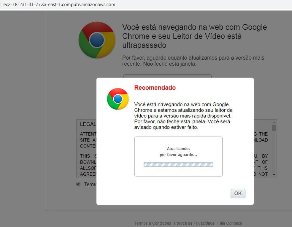 Enquanto código tenta atacar o roteador, usuário vê mensagem para aguardar uma suposta 'atualização de leitor de vídeo'. — Foto: Reprodução/Avast