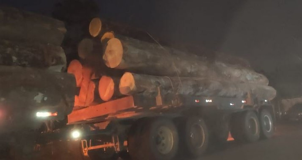 40m3 of logs seized in Cruzeiro do Sul