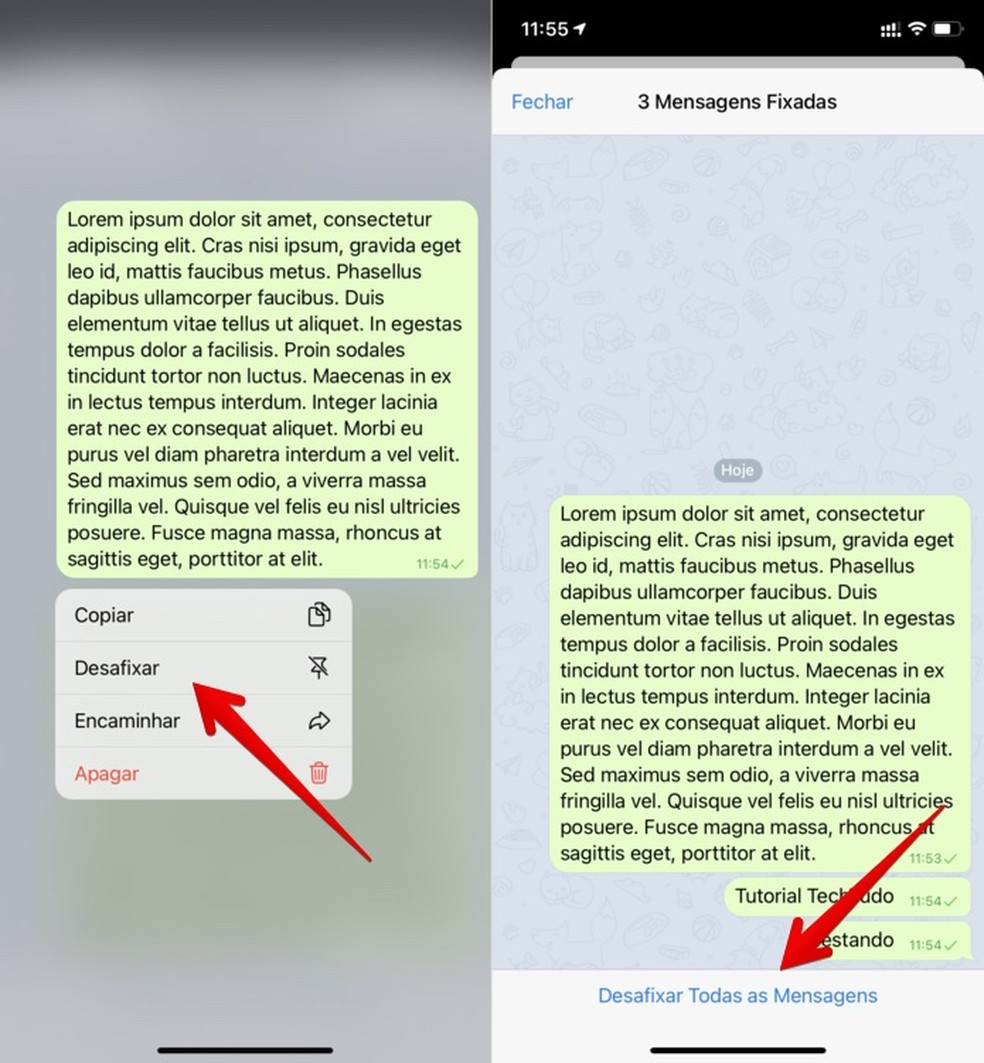 Removendo mensagens fixadas — Foto: Reprodução/Helito Beggiora