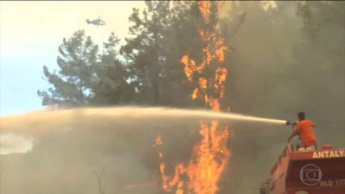 Incêndios florestais deixam seis mortos no sul da Turquia
