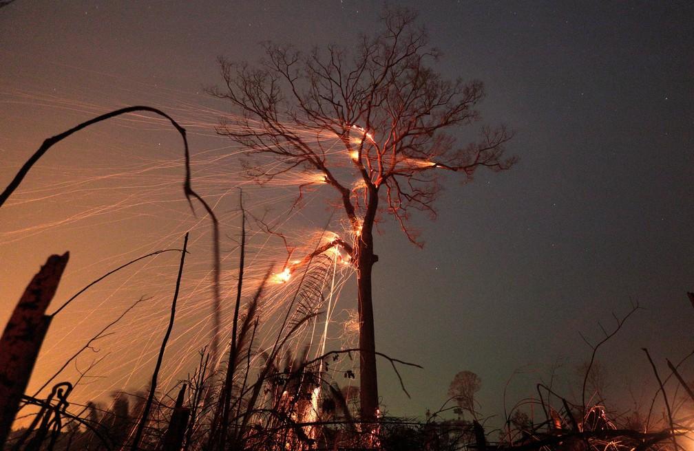 Área da floresta amazônica é queimada conforme é desmatada em Rio Pardo (RO). — Foto: REUTERS/Ricardo Moraes