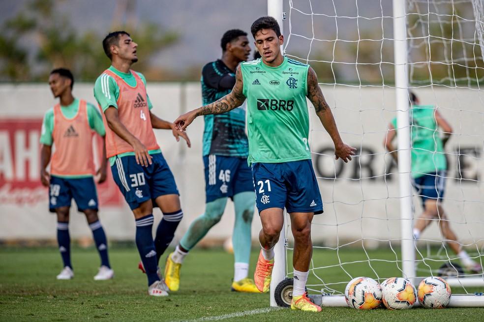 Pedro está no processo de transição e tem boas chances de pegar o Racing — Foto: Marcelo Cortes/Flamengo
