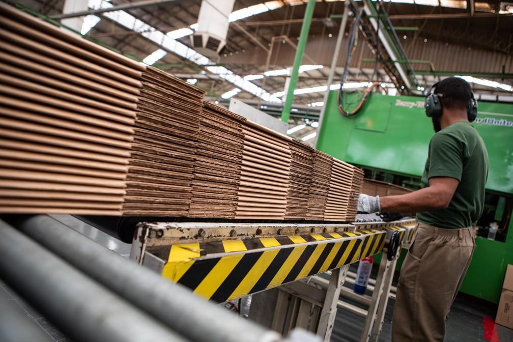Fábrica de papelão ondulado para embalagens no interior de São Paulo — Foto: Fábio Tito/G1