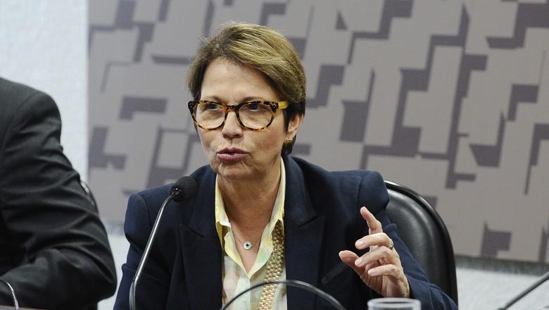 Tereza Cristina-frente parlamentar da agropecuária-fpa-ministério-ministra (Foto: Marcos Oliveira/Agência Senado)