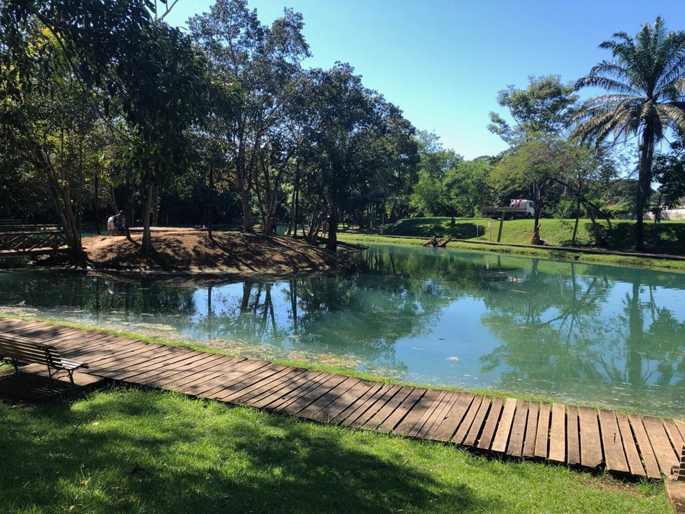 Restante da estrutura foi retirada da água nesta segunda (6) pela Sema.  — Foto: Jeferson Carlos/G1