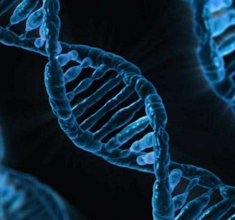 Estudo identifica variantes genéticas associadas ao diabetes tipo 1