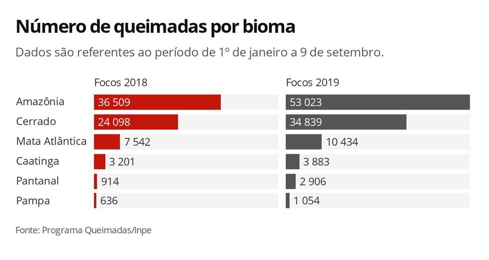 Número de queimadas por bioma — Foto: Carolina Dantas/G1