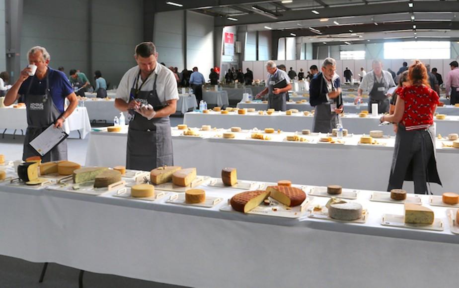 Produtores de queijos do Sul de MG comemoram premiação em mundial na França: 'Copa do Mundo'