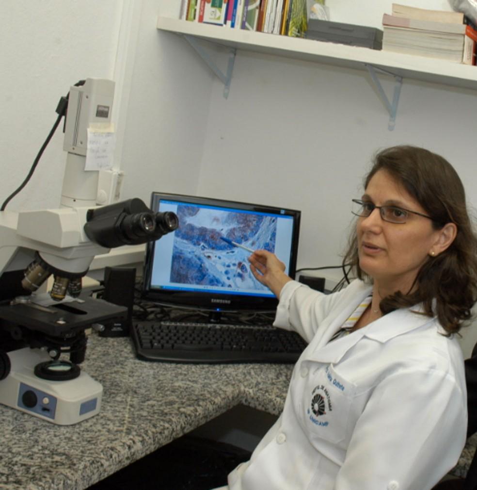 A responsável pelo estudo no Instituto de Biologia da Unicamp, Valéria Helena Alves Cagnon Quitete — Foto: Antoninho Perri/ Ascom Unicamp