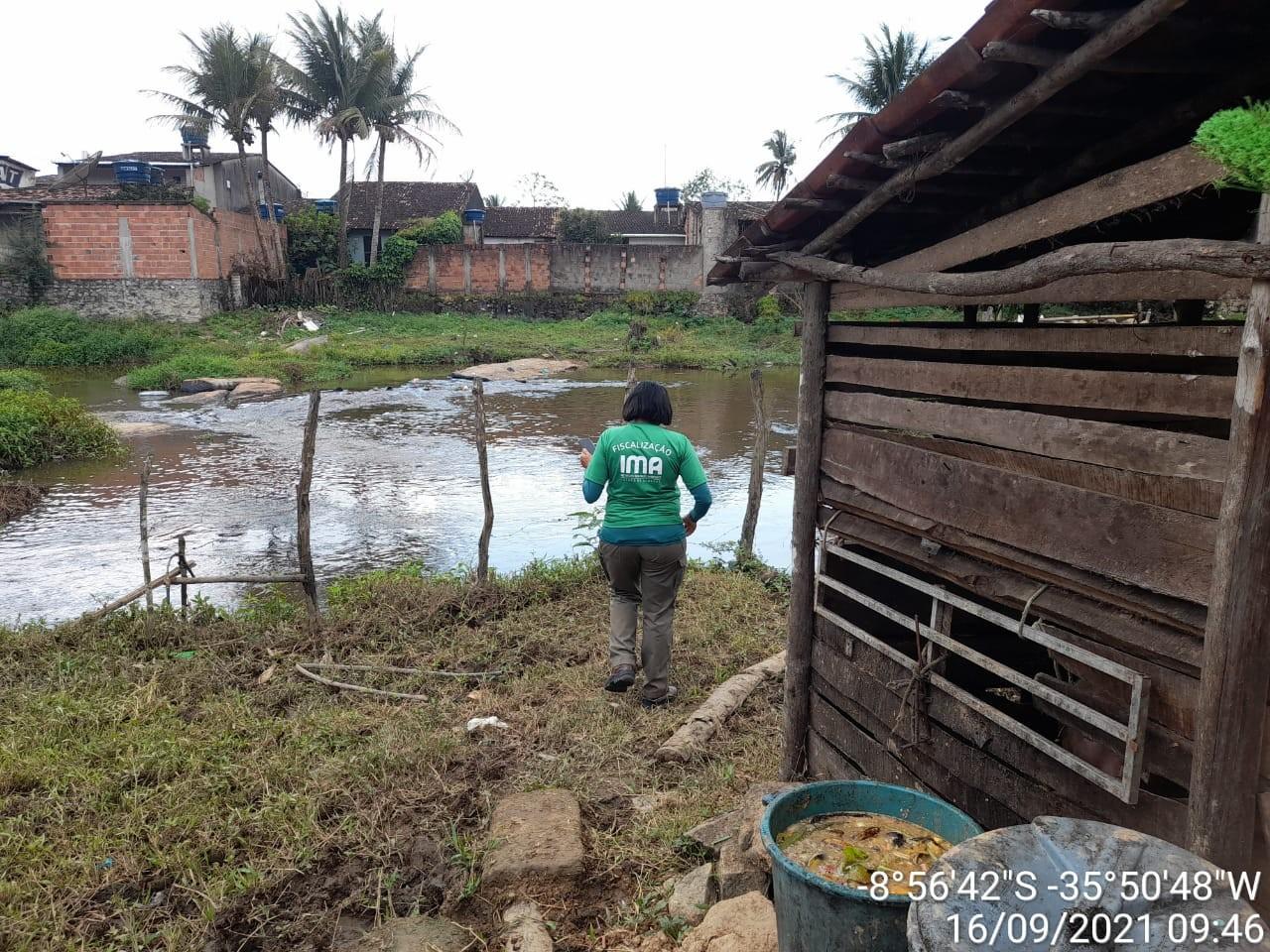 Operação do IMA apreende espingardas e recupera animais silvestres em 3 municípios de AL