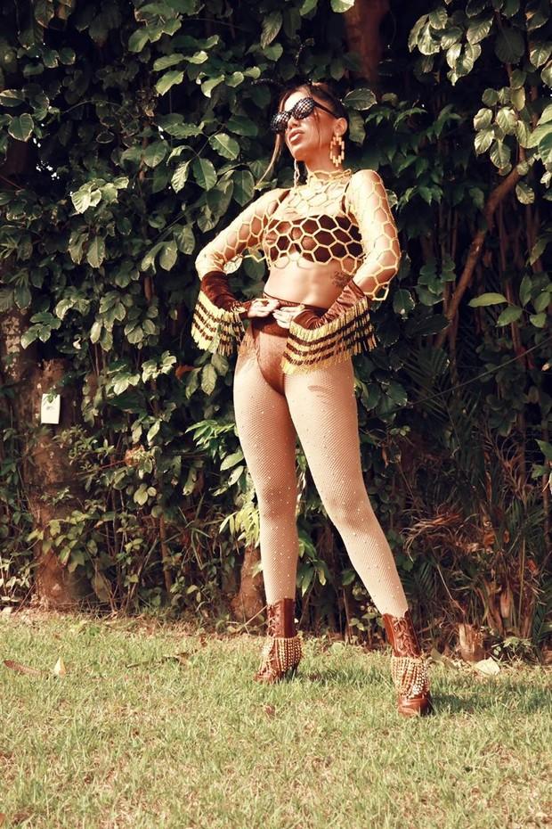 Anitta (Foto: Reprodução/ Divulgação)