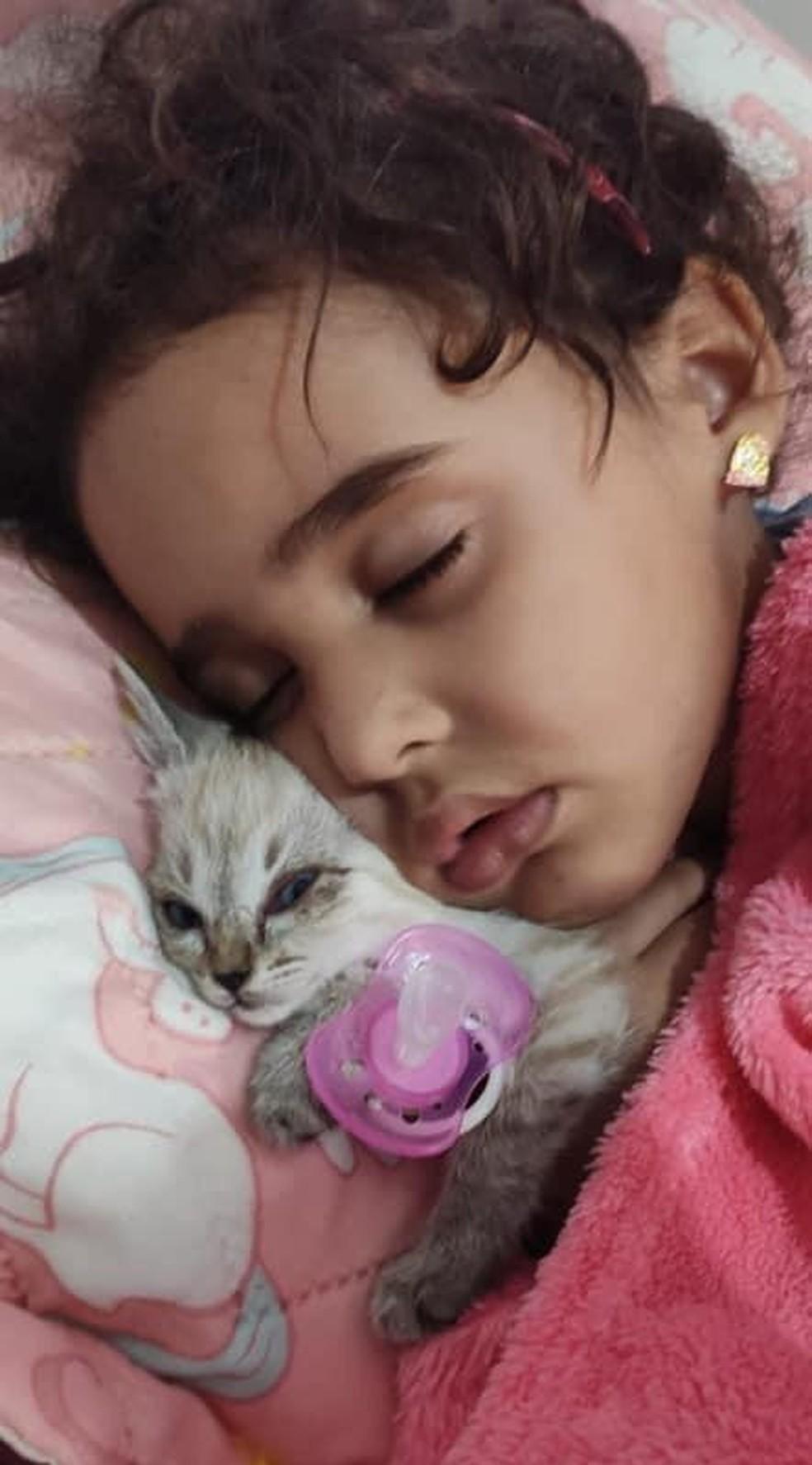 Segundo a mãe, Lorena chorava e não conseguia dormir direito sem a gatinha em Botucatu — Foto: Arquivo pessoal/Eduarda Oliveira