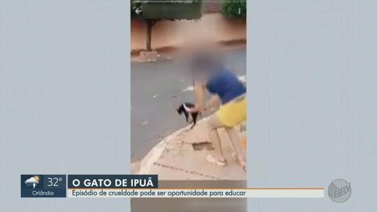 Vídeo de gêmeas lançando gato do outro lado da rua em Ipuã, SP, causa revolta entre moradores