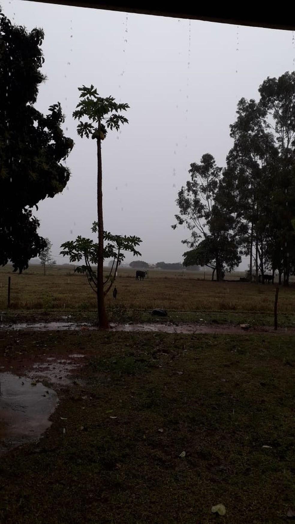 Moradora do distrito de Costa Machado, em Mirante do Paranapanema, registrou cerca de 110 milímetros de chuva em seu sítio — Foto: Maria Donizete de Souza Trava/Cedida