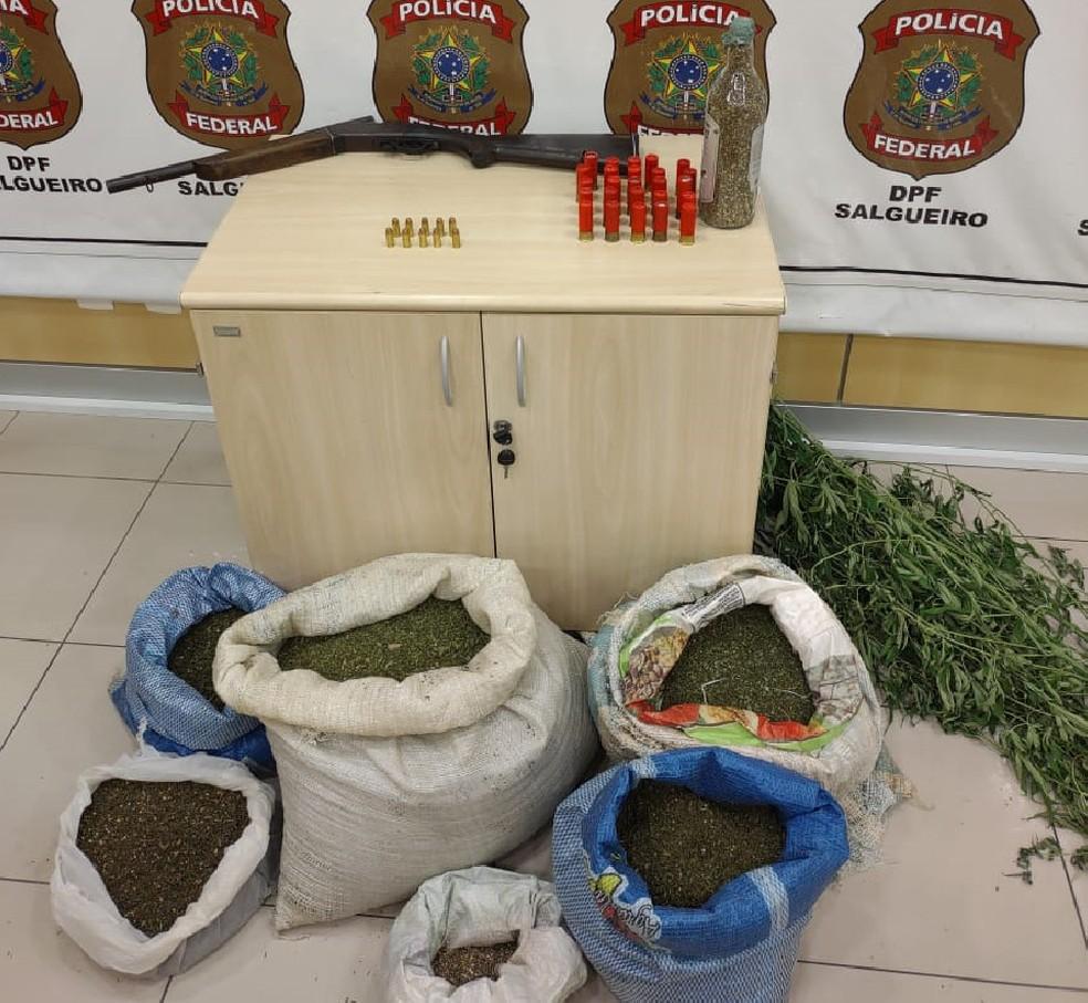 Maconha encontrada em Orocó — Foto: Divulgação / Polícia Federal