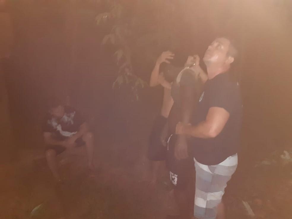 O carro com os três ocupantes, homens com idades entre 30 a 40 anos, havia despencado de uma altura de 4 metros da ponte — Foto: 2º sargento Alcides/Corpo de Bombeiros de Mato Grosso