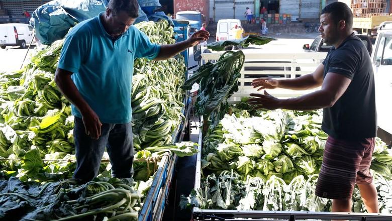 Abastecimento começa a ser restabelecido na Ceasa-RJ (Foto: Tânia Rêgo/Agência Brasil)
