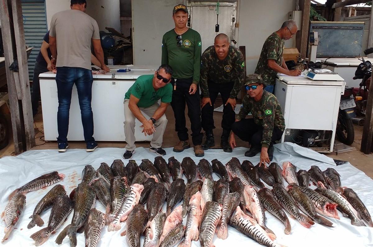 Homem que revendia peixe é preso com 231 kg de pescado ilegal em Cuiabá