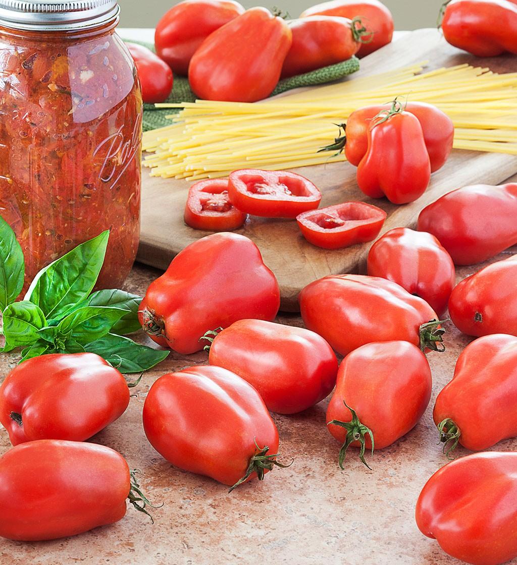O tomate San Marzano: DOC
