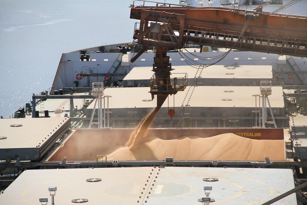 Brasil é o principal exportador mundial de soja — Foto: Fábio Scremim/APPA