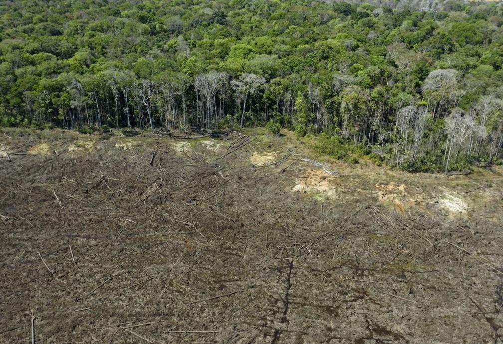 Foto aérea tirada no dia 7 de agosto mostra área deflorestada da Amazônia. — Foto: Florian Plaucheur/AFP