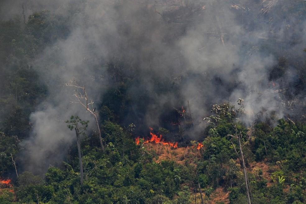 Queimada de aproximadamente 65 km em Porto Velho — Foto: Carl de Souza/AFP