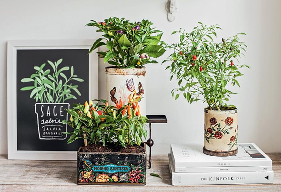 Quer uma decoração econômica? Reaproveite as embalagens! Latas de alimentos são ótimas para acomodar pequenas plantas de tempero. Use adesivos de borboletas ou flores, por exemplo, para decorá-las. Com essa ideia, qualquer cantinho vai ficar um charme. (Foto: Elisa Correa/Editora Globo)