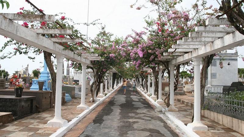 Rio Preto amplia funcionamento de cemitérios para evitar aglomerações no Dia de Finados