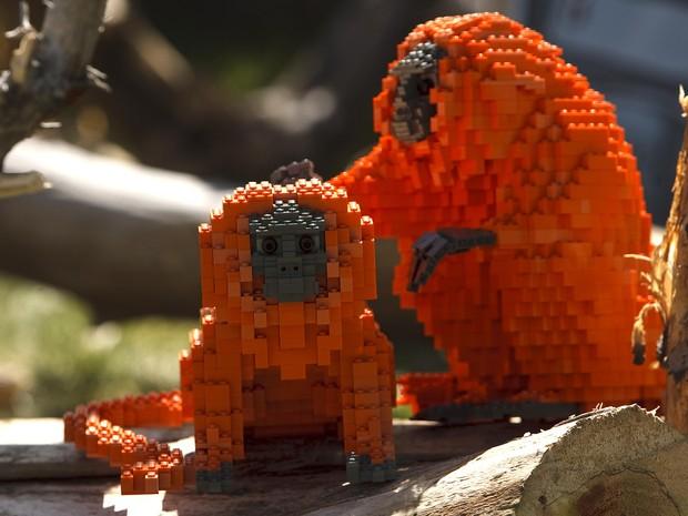 Micos de Lego 'tiram pilhos' um do outro em zoológico nos EUA (Foto: The Salt Lake Tribune/Leah Hogsten/AP)
