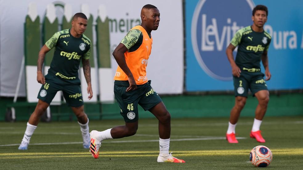 Jogadores trabalharam em dois campos nesta quinta-feira — Foto: Cesar Greco/Ag. Palmeiras