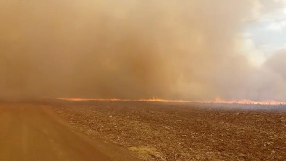 Incêndio atingiu áreas onde a lavoura de milho já tinha sido colhida por produtores, queimando a palhada que protegia o solo (Foto: Reprodução/G1 MS)