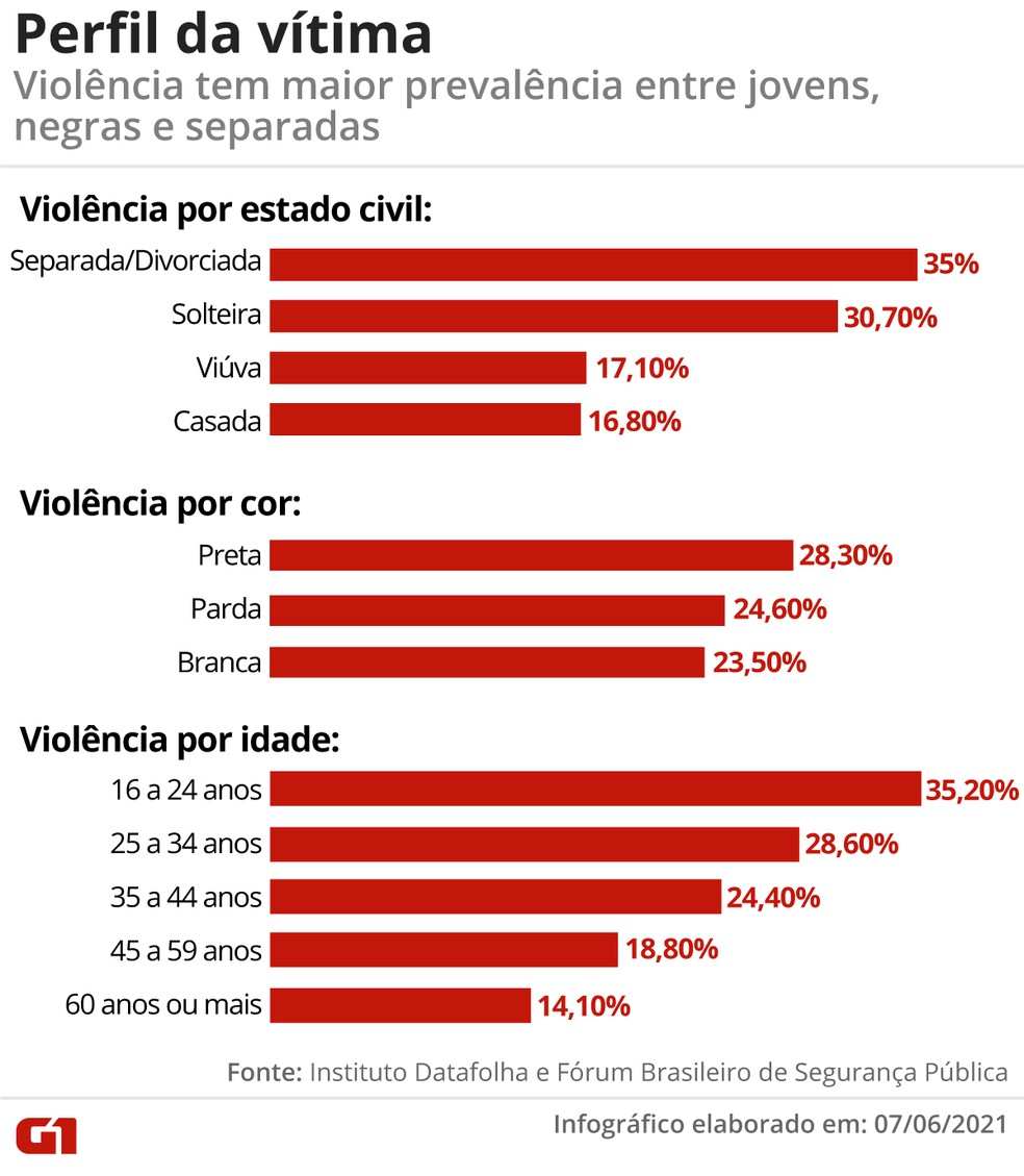Perfil das vítimas de violência doméstica — Foto: Arte/G1