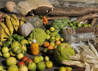 agricultura_familiar_frutas_mandioca_hortifruti (Foto: Agência Brasil)