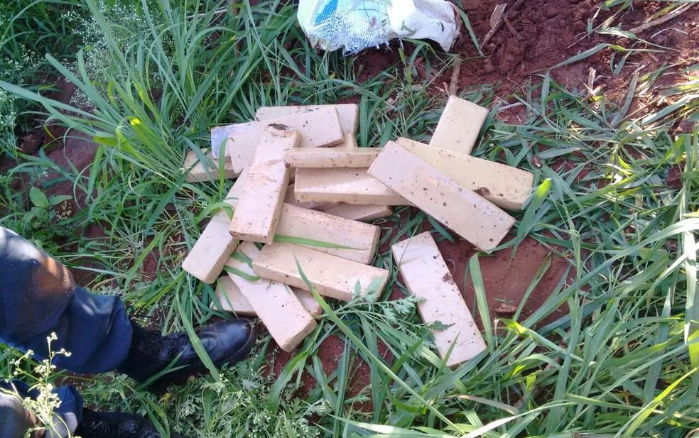 Drogas apreendidas em sítio de Limeira (Foto: Guarda Municipal/Divulgação)