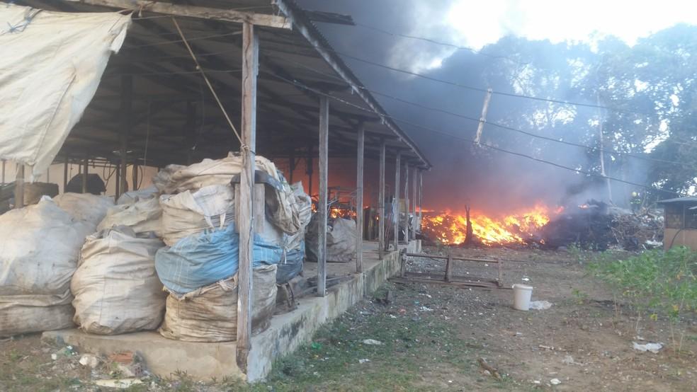 Chamas invadiram depósito de fábrica de reciclagem no bairro Dilma Roussef (Foto: Toni Francis/G1)
