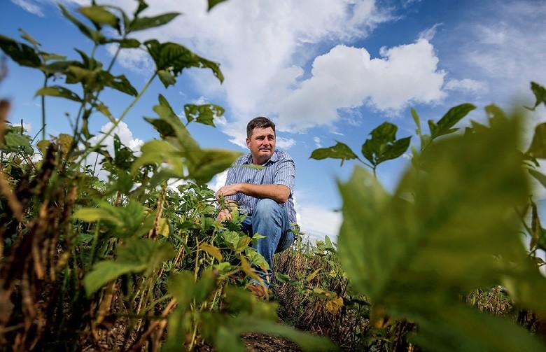 Regis Wilson Nunes Ferreira,  produtor de feijão em Unaí (MG) (Foto: Adriano Machado/Ed. Globo)