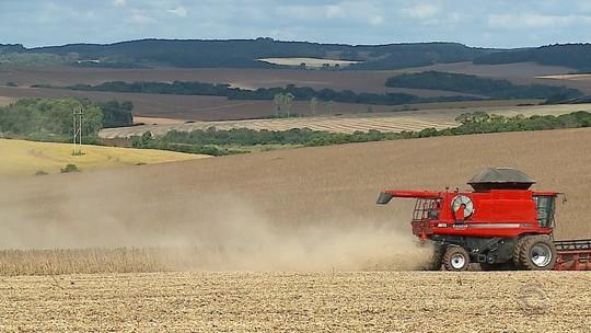 Produtores de soja do RS esperam colher 16 milhões de toneladas