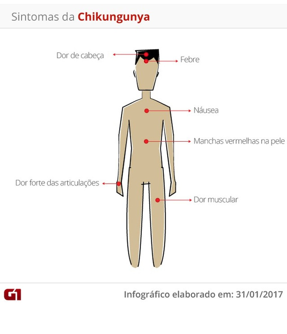 Sintomas das doenças (Foto: Arte/ G1)