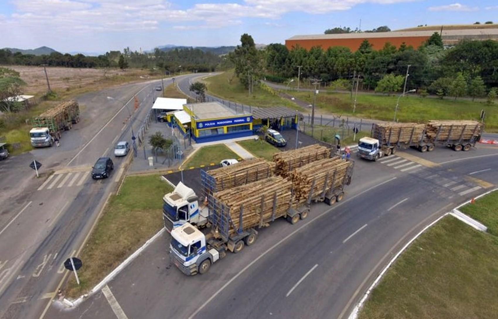 Caminhões com eucalipto são apreendidos por excesso de peso em Poços de Caldas, MG
