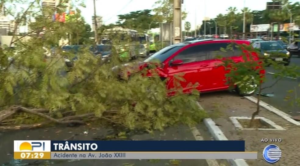 Carro colide com árvore na Av. João XXIII — Foto: Reprodução/TV Clube