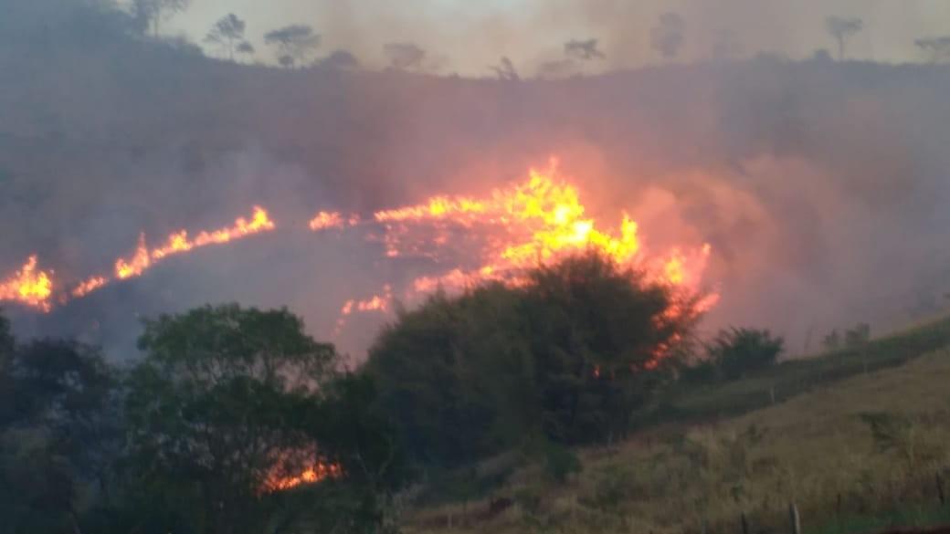 Fogo destrói área de vegetação equivalente a 14 campos de futebol em Macuco, RJ; vídeo - Notícias - Plantão Diário