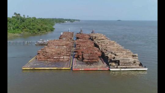 Operação Poseidon combate crime ambiental em Muaná, no Marajó