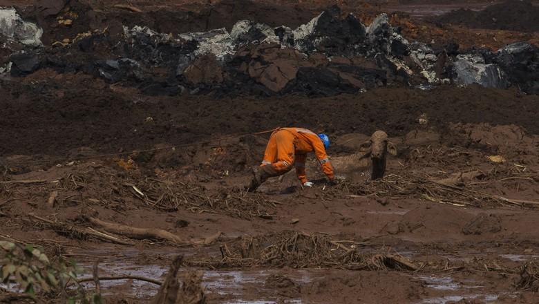 resgate-boi-brumadinho (Foto: Lalo de Almeida/Ed.Globo)
