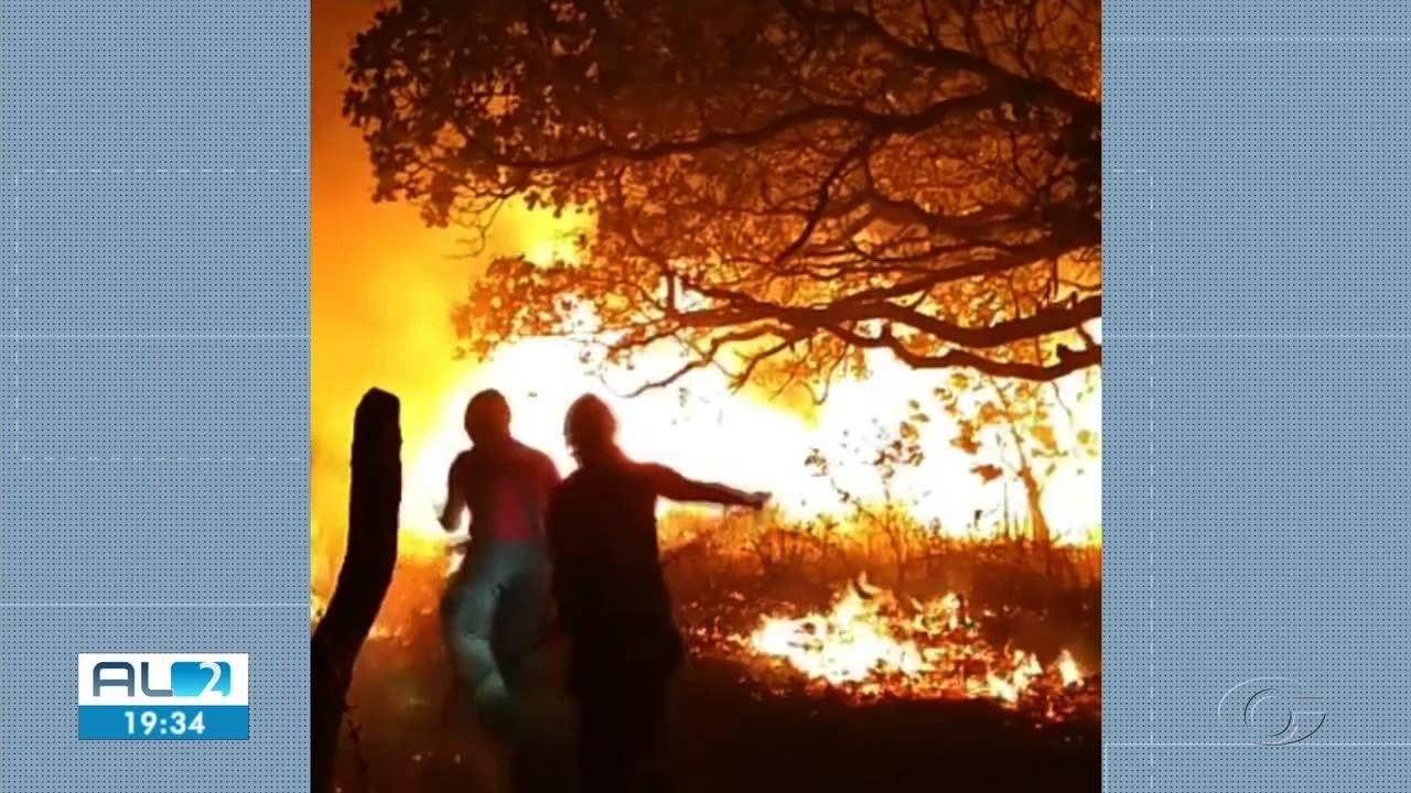 Ocorrências de incêndios em vegetação crescem 120% segundo o IMA